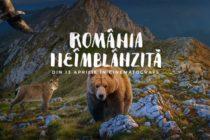 România neîmblânzită